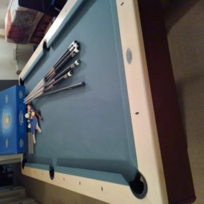 Olhausen 8ft Modern table & PingPong overlays